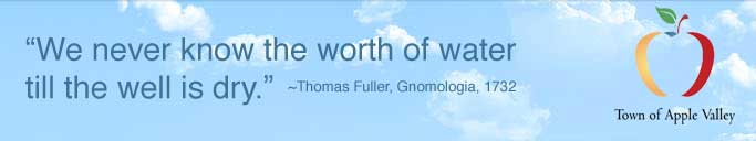 Thomas Fuller -- We never know the worth of water till the well is dry